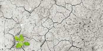 Constructeurs, propriétaires, collectivités,... Dès 2019, tous auront accès à la liste des Secteurs d'informations sur les sols (Sis) de leur département.